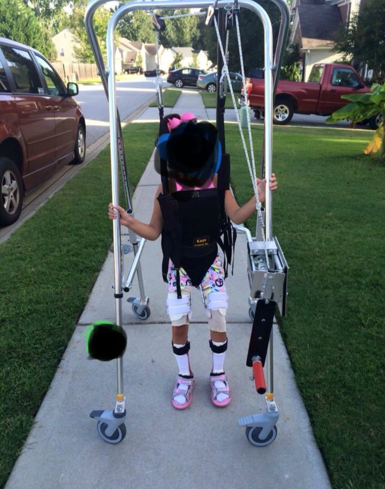 Photo 1 of Suspension walker